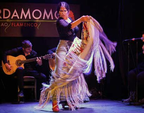 Flamenco Show Dinner
