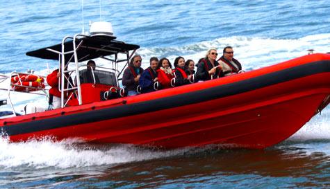 Magaluf speedboat