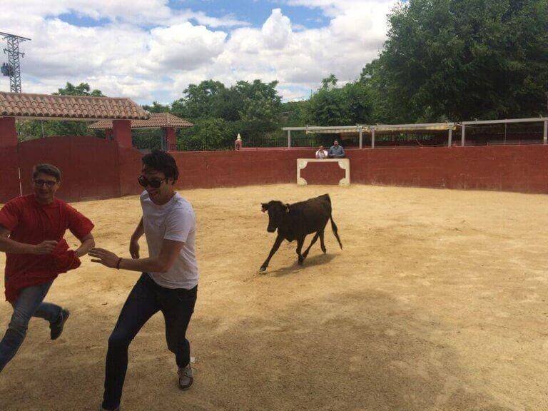 Madrid Baby Bull Running
