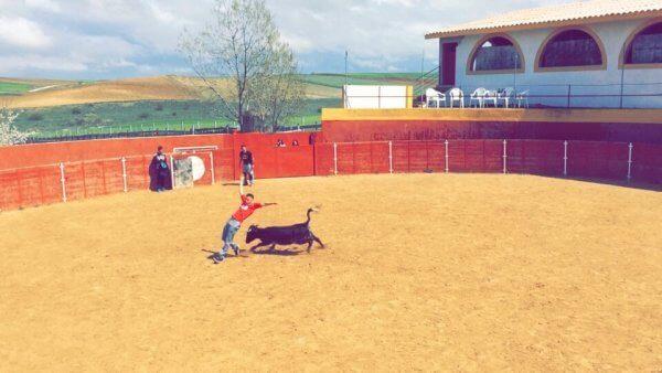 Benidorm Baby Bull Running